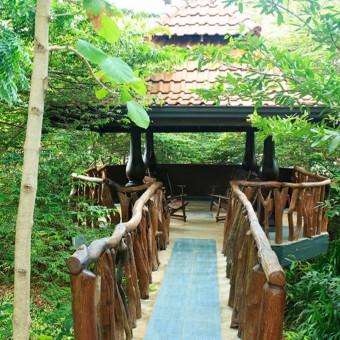 Hôtels de charme et luxe à Habarana
